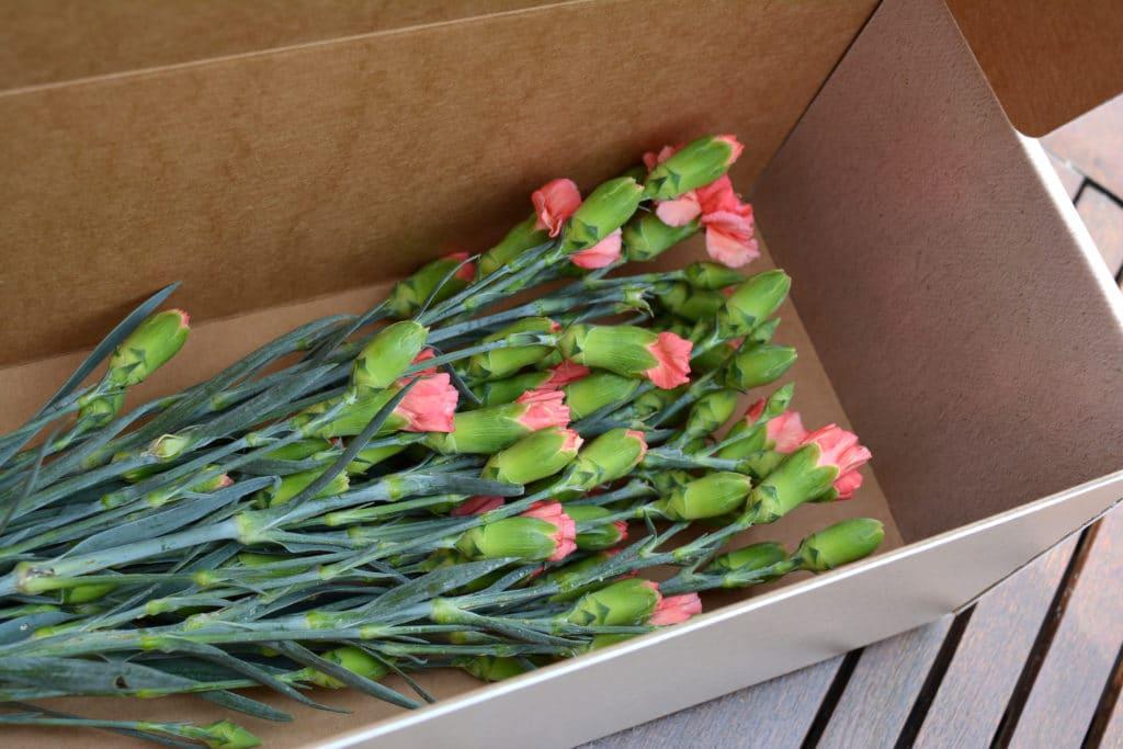 Blomlåda för blomsterbud